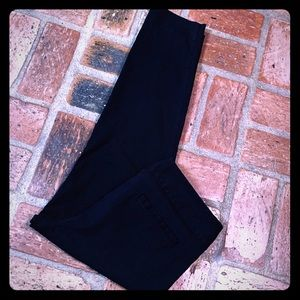 The Limited Viscose Nylon Blend Pants